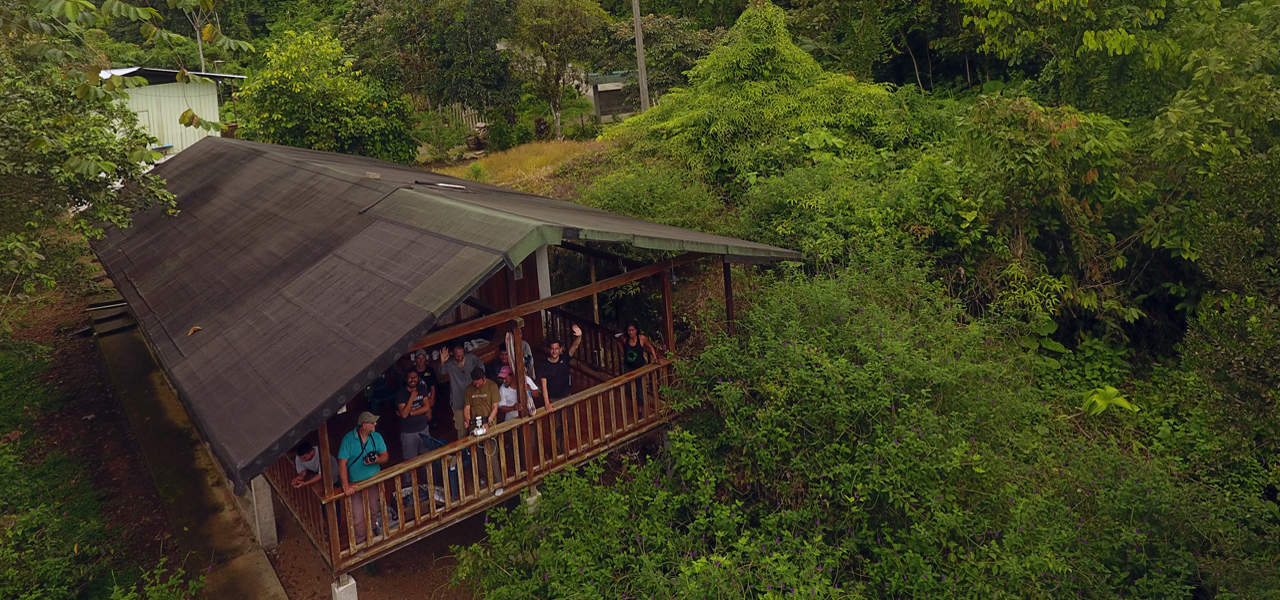 Umbrellabird Lodge