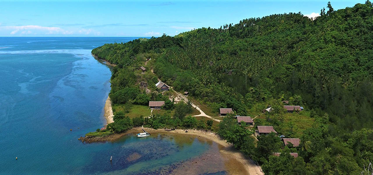 Read more about the article Weda Reef & Rainforest Resort