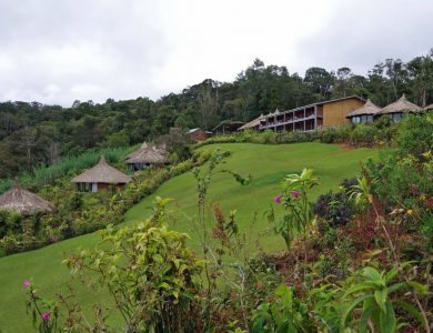 Ambua Lodge - Click here for more info