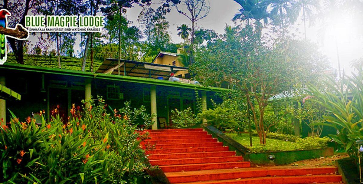 Blue Magpie Lodge2