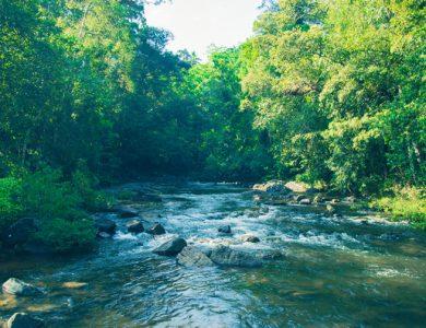 Blue Magpie River