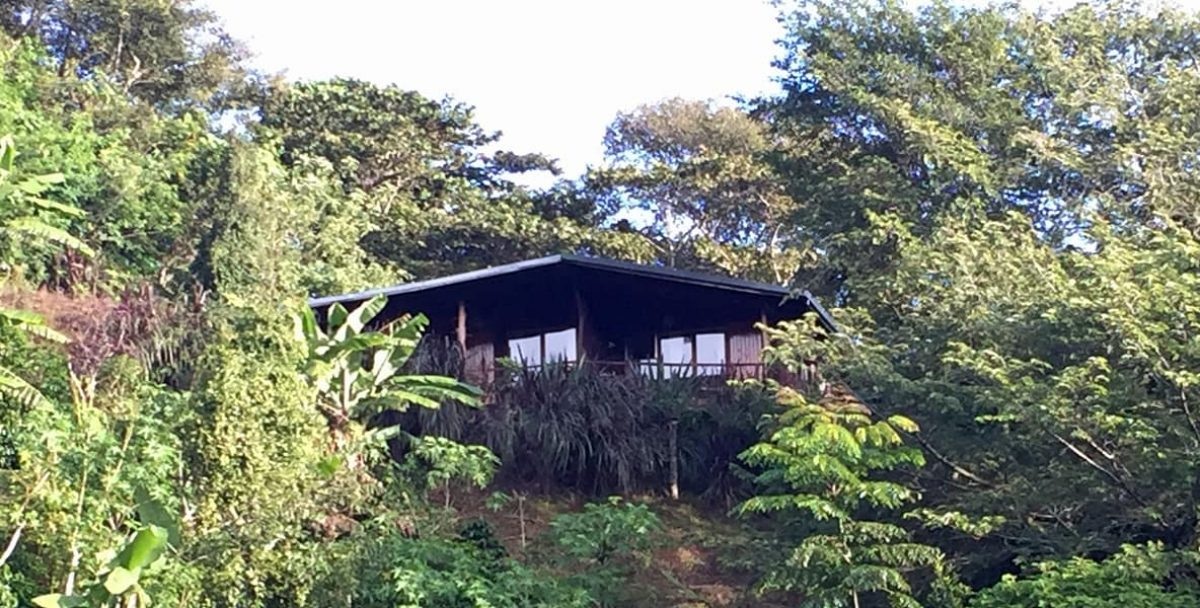 Toucanet Lodge - Click here for more info