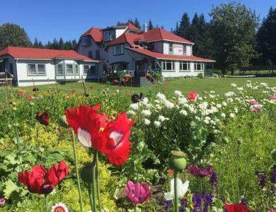 Gustavus Inn - Click here for more info