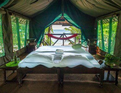 Masoala Room
