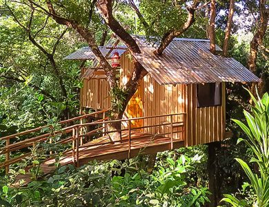 Roland's Garden Guesthouse - Treehouse