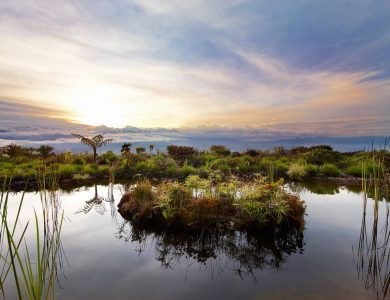 View from Rondon Ridge Lodge, Mount Hagen region. Papua New Guinea.