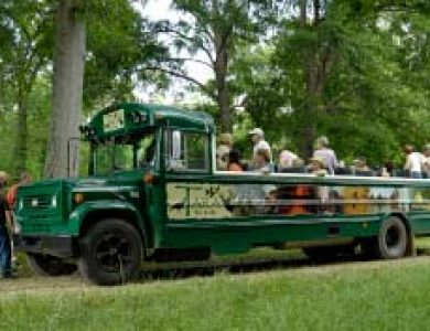 Tara Lodge Birding Bus
