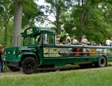 Tara Lodge Birding Bus