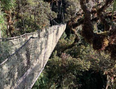 Wayqecha canopy walkway