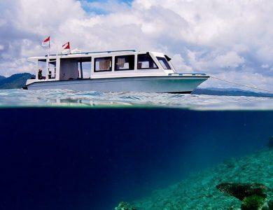Weda Reef Resort