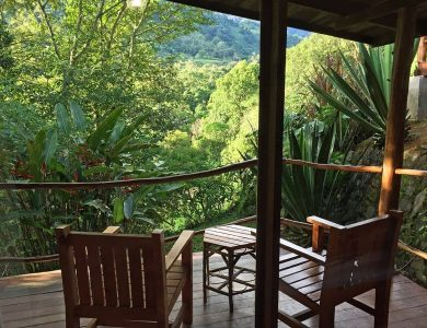 Toucanet Lodge - Another view from a standard room