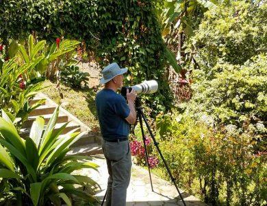 Las Terrazas Lodge - Birdwatching
