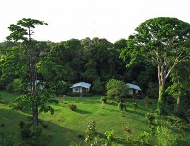cabanas-at-tranquillo-bay-eco-adventure-lodge-l
