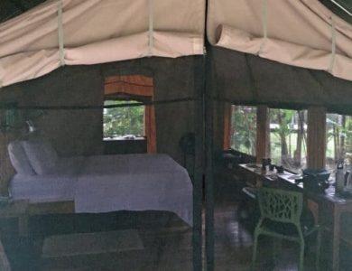 canopy-camp-2-l