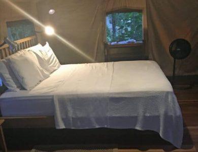 canopy-camp-4-l