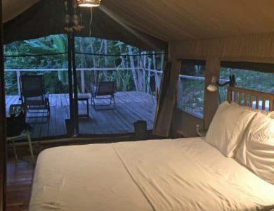 canopy-camp-5-l