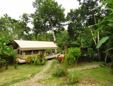 canopy-camp