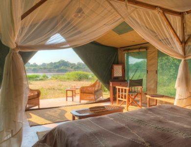 Flatdog camp - Luxury safari tent