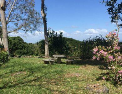 Casa Hacienda - The gardens