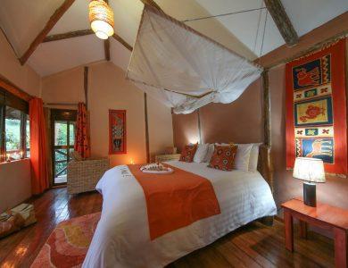 Gorilla Safari Lodge - Inside one of the rooms