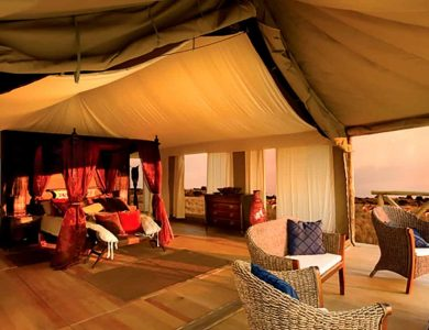 Konkamoya - Inside the tent