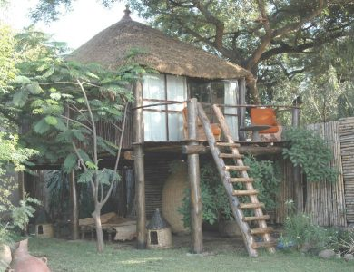 Babogaya Lake Viewpoint Lodge one-of-our-tree-houses
