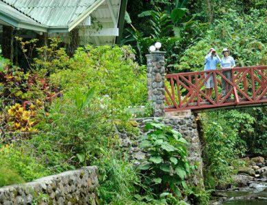 Canopy Lodge outside-lodge-entrance