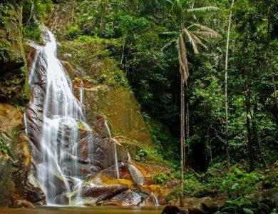 PumaRinri refreshing-waterfall