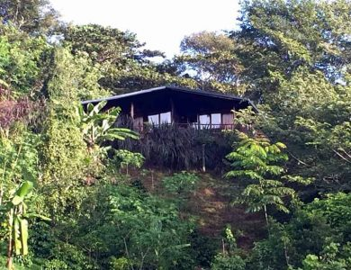 Toucanet Lodge - Room with a view