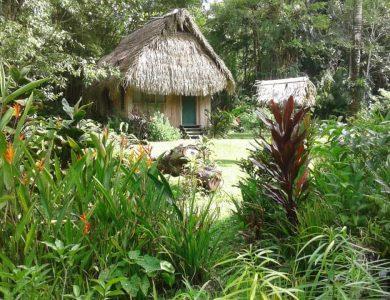 the-casita-garden-l