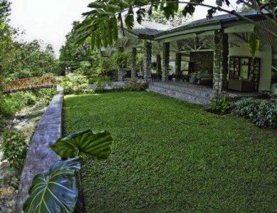 Canopy Lodge the-garden-area