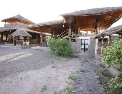Awash Falls Lodge - Click here for more info