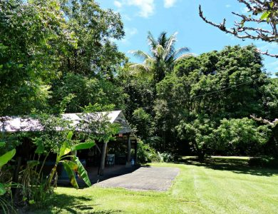 Daintree Valley Haven - The Shed - Dartboard, BBQ, Jacuzzi