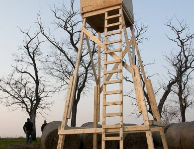 Tower Hide for Red-footed Falcons