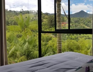 Araucana Lodge - View from one of the rooms