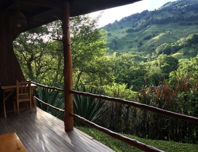 Toucanet Lodge - View from the deck of a standard room