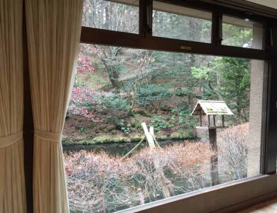 Shiotsubo Onson view-of-our-bird-feeder-and-garden