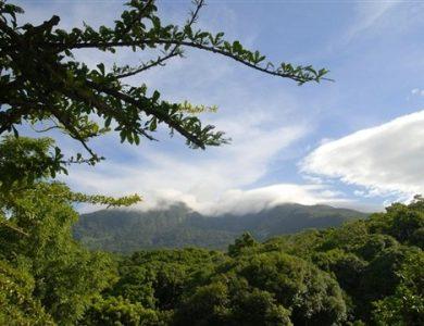 Cas Hacienda - Volcan Mombacho