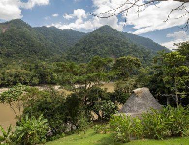 PumaRinri wonderful-views-from-our-garden